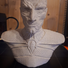 Picture of print of The Night King Bust v2 - Game of Thrones