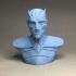 The Night King Bust v2 - Game of Thrones image