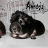Amnesia a machine for guinea pigs image