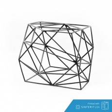01  Durers Solid 3D Model