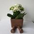Succulent Planter / 3D printed planter / Legged Planter print image