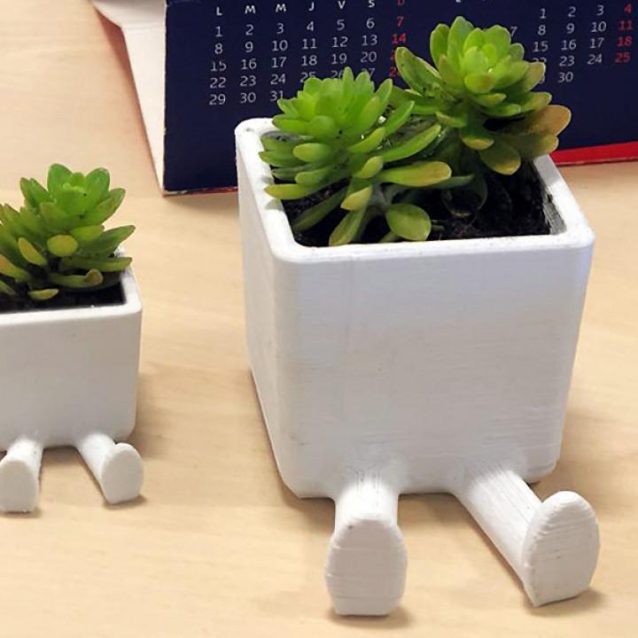 Succulent Planter / 3D printed planter / Legged Planter