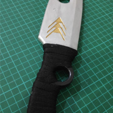 Picture of print of Hunter Knife - Destiny