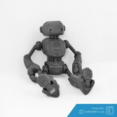 Ankly Robot - 3d Printed Assembled