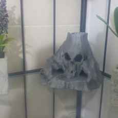 Picture of print of Skull Island