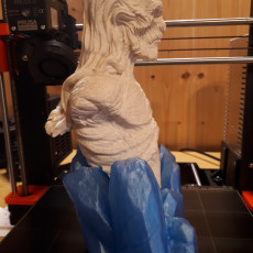 Picture of print of white walker GOT bust