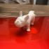 French Bulldog print image