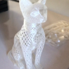 Picture of print of Cat design Voronoi This print has been uploaded by Emrah Çapkın