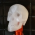 Skull mini flashlight topper image