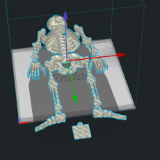 Picture of print of Dancing Skeleton