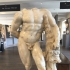 Hercules Body image