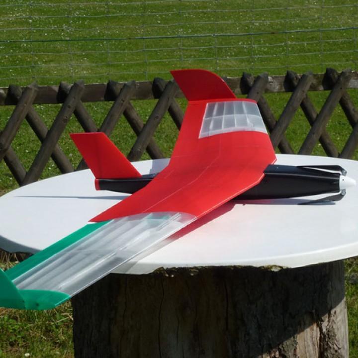 Speedy  Red Swept Wing 2  RC