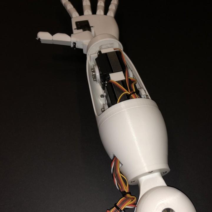 Humanoid Robotic Torso PROTO1