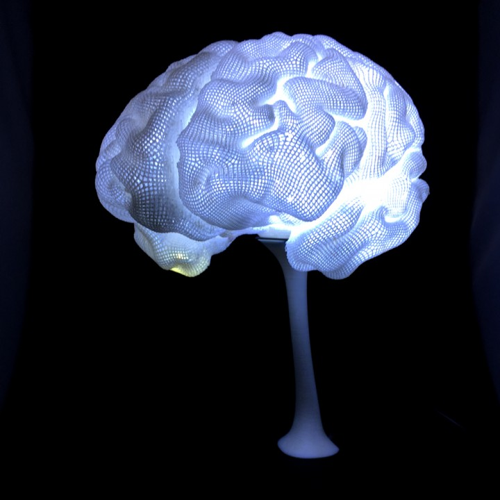 3D Printable Radiant Brain From MRI By Create Cafe 3D