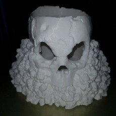 Picture of print of Skull Holder