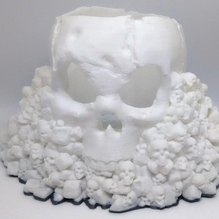 Skull Holder