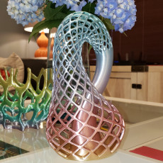 Picture of print of Klein Vase This print has been uploaded by Shahan Subzwari