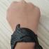 Dolphin armband image