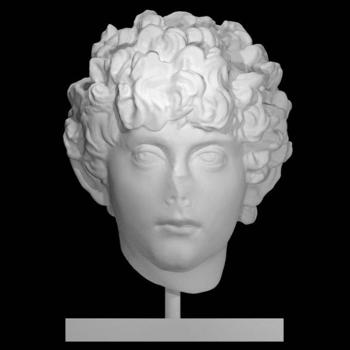 Head of a Roman youth