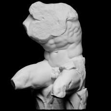 230x230 belvedere torso