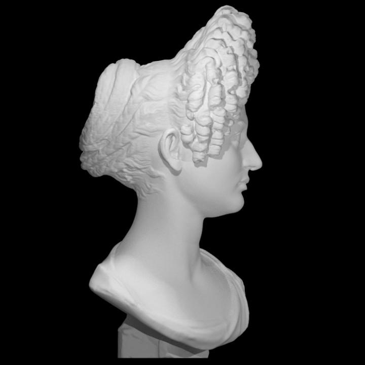 "Portrait Bust of a Flavian Woman, The ""Fonseca Bust"""