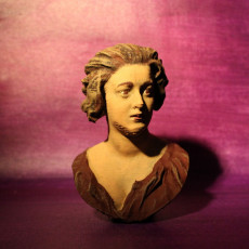 Picture of print of Bust of Costanza Bonarelli