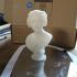 Bust of Costanza Bonarelli print image