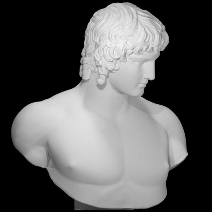 Portrait of Antinous