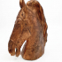 Horse Head from the Equestrian statue of Marcus Aurelius print image
