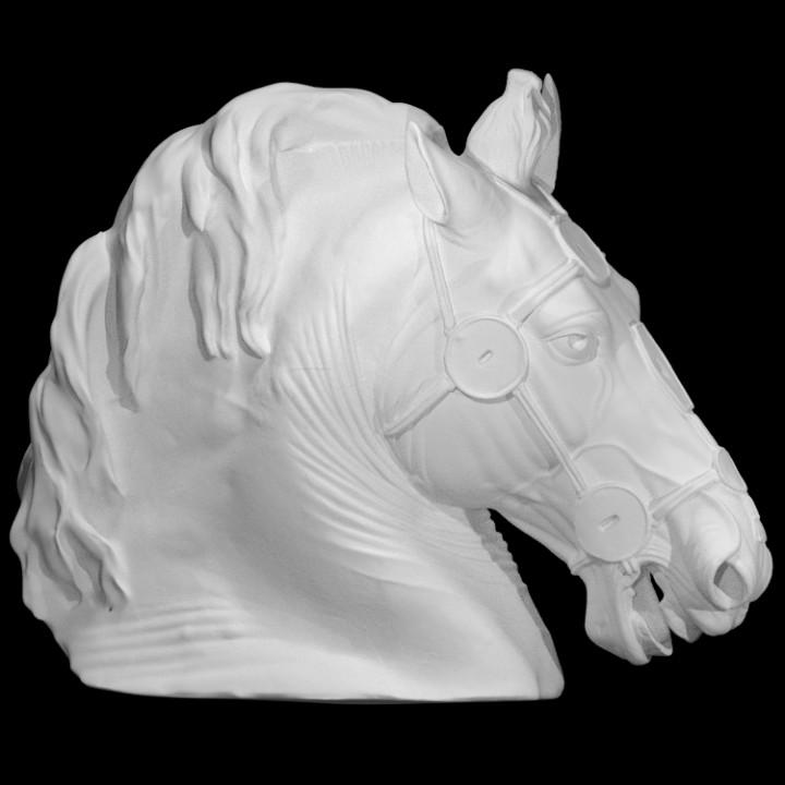 Horse Head from the Equestrian statue of Marcus Aurelius
