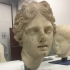 Head of one of Laocoon's sons (?) image