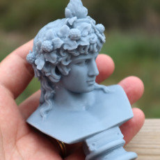 Picture of print of Bust of Antinous as Dionysus