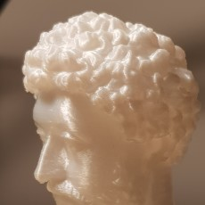 Picture of print of Bust of Marcus Aurelius This print has been uploaded by Oscar Milani