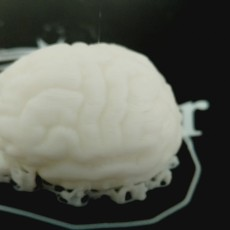Picture of print of Brain keychain