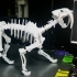 Saber-toothed cat image