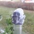 Poison Skulls Bottle Stopper image