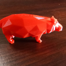 Picture of print of Low Poly Hippo