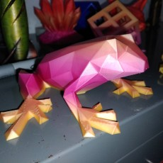 Picture of print of Low Poly Frog This print has been uploaded by Chris Hitchabout