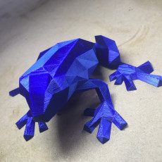 Picture of print of Low Poly Frog