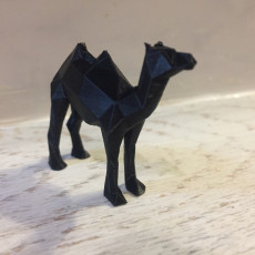 Picture of print of Low Poly Camel