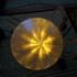 Diamond Light Cap image