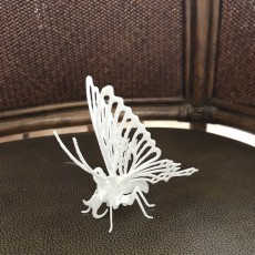 Picture of print of mariposa