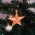 StarTop image