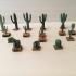 Miniature Cacti Many Varieties image