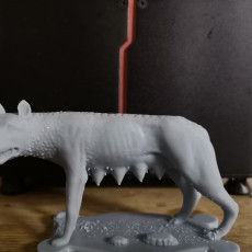 Picture of print of Capitoline Wolf