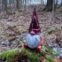 Bearded Gnome image