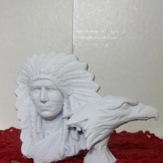 Indian Chief with Eagle
