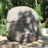 Colossal Olmec Head image