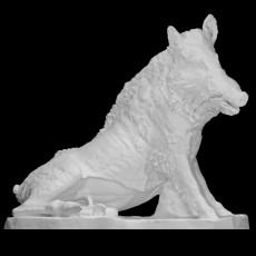 The Wild Boar, Porcellino