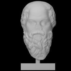 Head of Socrates